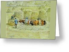 Teff For Injera Greeting Card