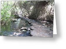 Tel Dan Stepping Stones Greeting Card