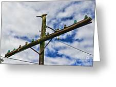Telegraph Pole - Yesterdays Technology Greeting Card