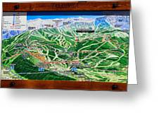 Telluride Ski Map Detail  Greeting Card