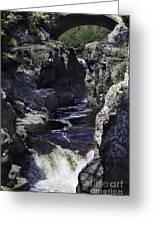Temperance River Greeting Card