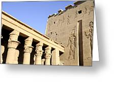 Temple At Philae In Egypt Greeting Card