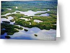 Ten Thousand Islands 2  Greeting Card