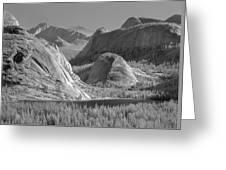 6m6552-bw-tenaya Lake Yosemite Bw  Greeting Card
