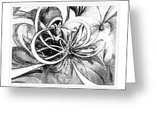 Tendrils In Pencil 02 Greeting Card