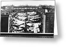 Tenement Housing Laundry Greeting Card