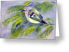 Tenerife Goldcrest Greeting Card