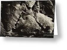 Tennessee Arrowheads Greeting Card by Wilma  Birdwell