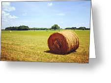 Tennessee Field Greeting Card