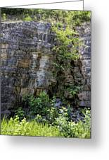 Tennessee Limestone Layer Deposits Greeting Card