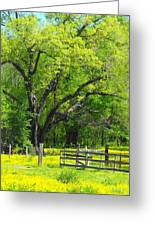 Tennessee Spring Greeting Card