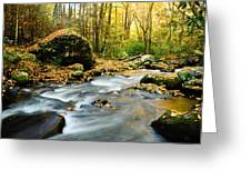 Tennessee Stream In Fall Greeting Card