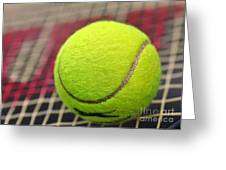Tennis Anyone... Greeting Card