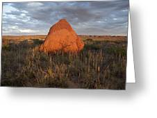 Termite Mound, Exmouth Western Greeting Card