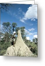 Termite Mound Greeting Card by Mark Newman