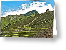 Terraces Of Machu Picchu-peru Greeting Card