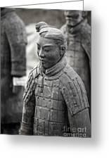 Terracotta Army Warriors In Xian China Greeting Card