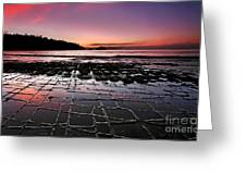 Tesselated Pavement Sunrise Greeting Card