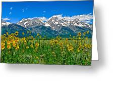 Teton Peaks And Flowers Greeting Card