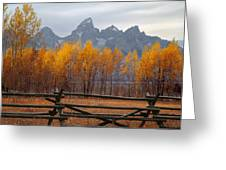 1m9354-teton Range In Autumn From Jackson Hole Ranch Country Greeting Card