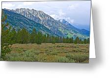 Tetons Above The Meadow In Grand Teton National Park-wyoming Greeting Card