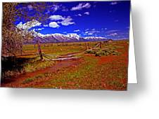 Tetons From Antelope Flats Greeting Card