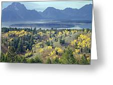 1m9209-tetons From Signal Mountain, Wy Greeting Card