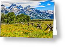 Tetons In The Spring Greeting Card