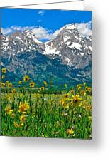 Tetons Peaks And Flowers Center Panel Greeting Card