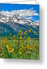 Tetons Peaks And Flowers Right Panel Greeting Card