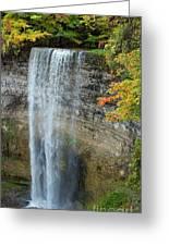 Tews Falls In Autumn Greeting Card