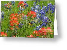 Texas Best Wildflowers Greeting Card