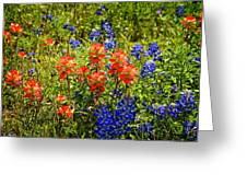 Texas Bluebonnets And Red Indian Paintbrush Greeting Card