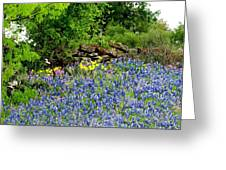Texas Bluebonnets And Stone Wall Greeting Card