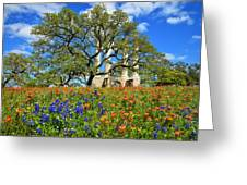 Springtime Ruins Greeting Card