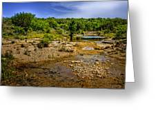 Texas Hill Country Stream Greeting Card by David and Carol Kelly