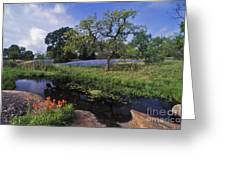 Texas Hill Country - Fs000056 Greeting Card