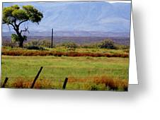 Texas Landscape 16095 Greeting Card