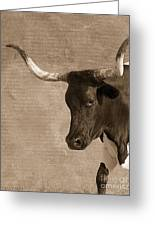 Texas Longhorn #6 Greeting Card
