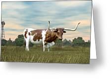 Texas Longhorn  Greeting Card