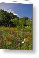 Texas Spring Spectacular Greeting Card
