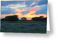 Texas Wildflower Sunset  Greeting Card