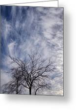 Texas Winter Clouds Greeting Card