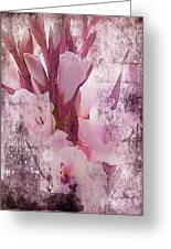 Textured Pink Gladiolas Greeting Card