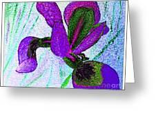 Textured Wild Purple Iris Greeting Card