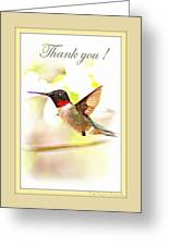 Thank You Card - Bird - Hummingbird Greeting Card