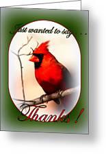 Thanks - Card Greeting Card