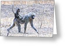 Thanks For The Ride Olive Baboon Greeting Card