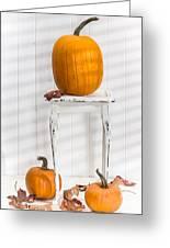 Thanksgiving Pumpkin Display Greeting Card