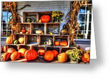 Thanksgiving Pumpkin Display No. 1 Greeting Card